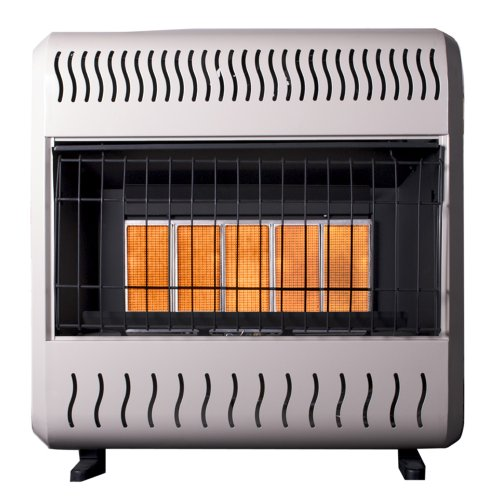 Sure Heat 26 000 Btu Infrared Dual Fuel Gas Space Heater