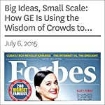 Big Ideas, Small Scale: How GE Is Using the Wisdom of Crowds to Design Better Appliances | Joann Muller