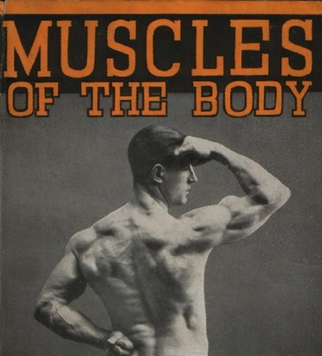 Muscles of the Body and How to Develop Them