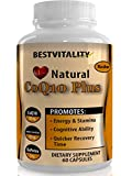 BestVitality Natural Coenzyme Coq10 Vegan Complex (Coq10 - 100mg, Acetyl L-carnitine - 100mg and Bioperine - 5mg) Kosher - Made in USA ...