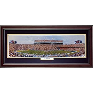 Louisiana State University LSU Tigers (45 Yard Line) Deluxe Framed Panoramic Photo by PalmBeachAutographs.com
