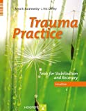 img - for Trauma Practice: Tools for Stabilization and Recovery book / textbook / text book