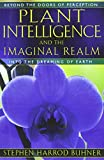 Plant Intelligence and the Imaginal Realm: Beyond the Doors of Perception into the Dreaming of Earth
