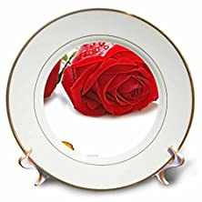 buy Red Roses With Golden Wedding Rings. - Decorative Porcelain Plate