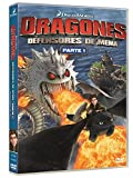 Dragones: Los Defensores De Mema [DVD]