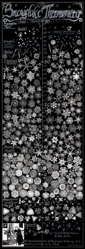 Snowflake Thermometer Poster