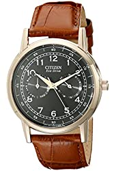 Citizen Men's AO9003-08E Rose Gold-Tone Stainless Steel Eco-Drive Watch with Leather Band