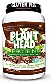 PlantHead Protein Chocolate 23 oz
