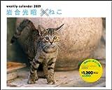 2009週めくり岩合光昭×ねこ (Yama-Kei Calendar)
