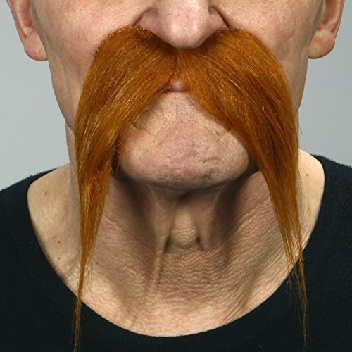 Kung-fu master ginger moustache