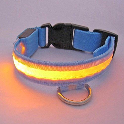 Bild von: Lesypet ® LED-Licht blinkt Hundewelpen Haustier Sicherheitshalsband Nylon Verstellbare Breite 2,5 cm (Rot, Gelb, Blau, Gruen, Orange, Pink) & (Small, Medium, Large, Extra-Large)