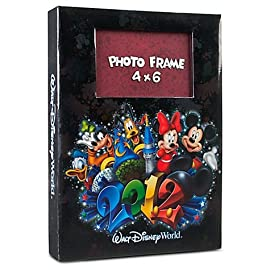 2012 Walt Disney World Large Photo Album