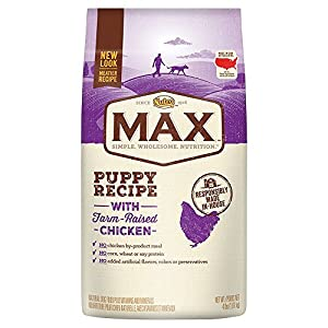 NUTRO MAX Puppy Recipe With Farm Raised Chicken Dry Dog Food 4 Pounds