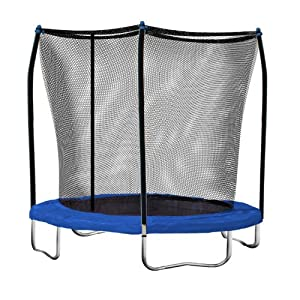 Skywalker 8-Feet Round Trampoline with Safety Enclosure Combo at Sears.com