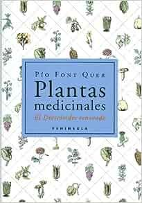 Plantas Medicinales (Spanish Edition): P. Font Quer: 9788483072424