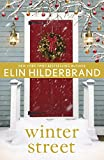 Winter Street (English Edition)
