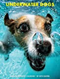 Underwater Dogs 2015 Engagement Calendar