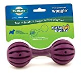 PetSafe Busy Buddy Waggle Dog Toy, Small