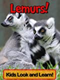 Lemurs! Learn About Lemurs and Enjoy Colorful Pictures - Look and Learn! (50+ Photos of Lemurs) (English Edition)