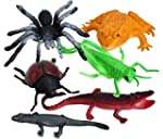 Insect Polybag Perfect Christmas Stoc...