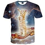 1911NC メンズ 3D 春 夏 ストリート 原宿系 デザイン  サマー モード 動物 t-shirt プリント ヒップホップ おもしろ おしゃれ ファッション ロック スタイル 猫柄 Tシャツ 半袖