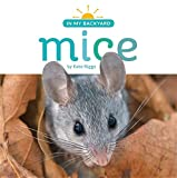 Mice (In My Backyard)