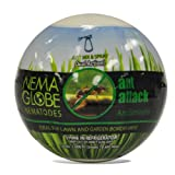Green it Nema-Globe Ant Attack for Pest Control