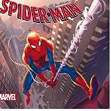 Spiderman, LE MONDE SECRET