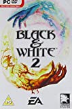Black & White 2 (PC DVD) [Importación inglesa]
