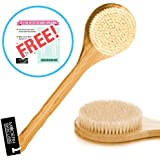 Best Brush for Dry Skin and Body Brushing - Long, Wooden Handle, Natural Boar Bristles, Bamboo Body Spa Brush - Dry Body Brush for Cellulite, Exfoliation, Detox & More - Free Skin Brush Visual Instruction Guide