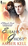 Elijahs Ghost (A Wizards Touch Book 4)