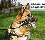 Anti-Zieh-Trainings-Halfter für Hunde