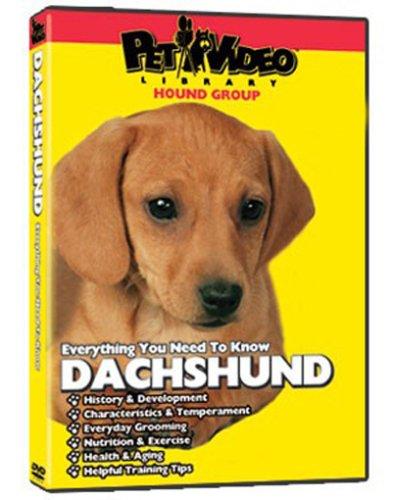 Dachshund DVD + Dog & Puppy Training Bonus