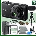 Sony DSC-WX80 Digital Camera (Black) + 16GB Green's Camera Bundle 1