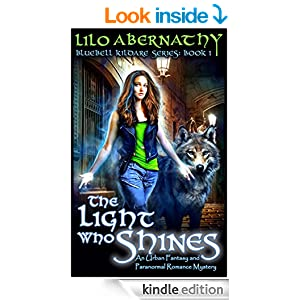 The Light that Shines Book Cover