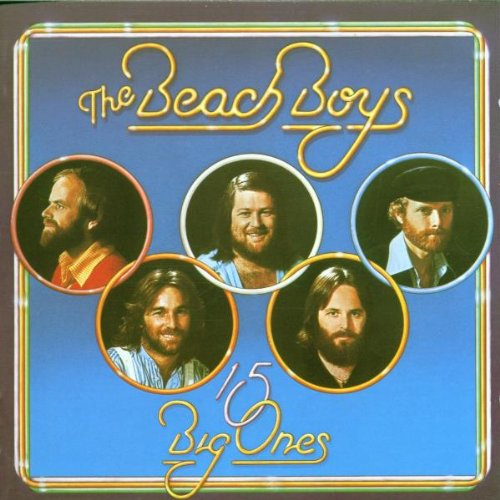 The Beach Boys - 15 Big Ones / Love You - Zortam Music