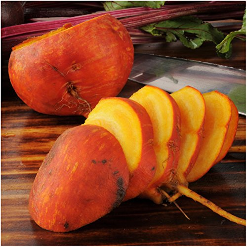 Package of 600 Seeds, Golden Detroit Beetroot (Beta vulgaris) Non-GMO Seeds By Seed Needs