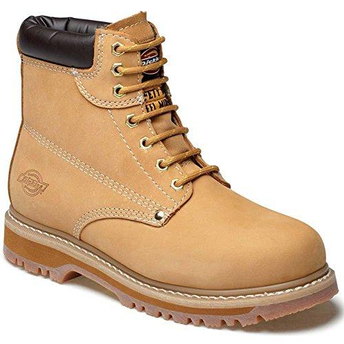 Dickies Cleveland, Chaussures de Sécurité Homme