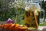 Set of Two - Classic Country Mammoth Mug Mason Jar Quart Size Drinking Glasses 38oz Each
