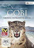 Faszination Wüste - Gobi: Größte Steppenwüste Asiens (SKY VISION)