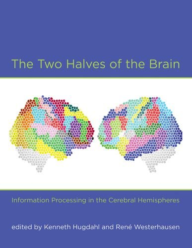 The Two Halves of the Brain: Information Processing in the Cerebral Hemispheres (MIT Press)