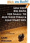 Low Cost BIG DATA For Small- to Mid-S...