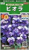 サカタのタネ 実咲花6703 ビオラ フルーナ ライトブルー 00906703