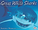 img - for Great White Sharks (Animal Predators) book / textbook / text book