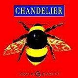 Facin Gravity by Chandelier
