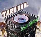 TARO SOUL / SOUL SPIRAL