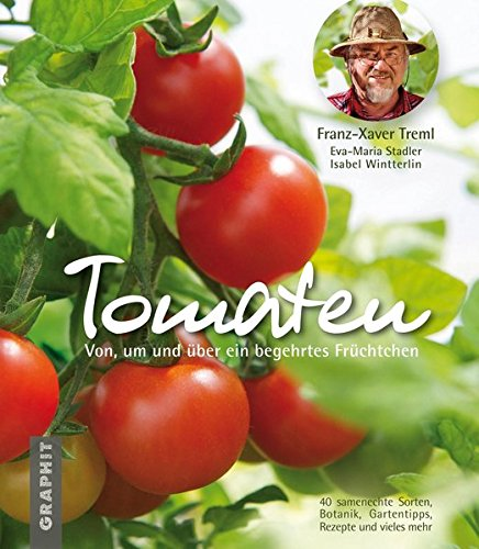 tomaten-von-um-und-uber-ein-begehrtes-fruchtchen
