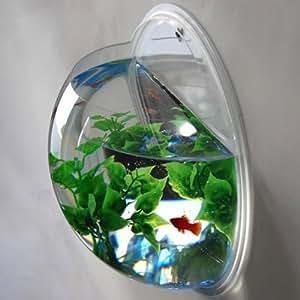 New fish wall mounted bowl aquarium wall hanging tank for Fish bowl amazon