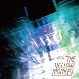 砂の塔-THE YELLOW MONKEY