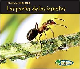 Amazon.com: Las partes de los insectos (Comparar insectos